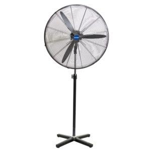 Fan for rent